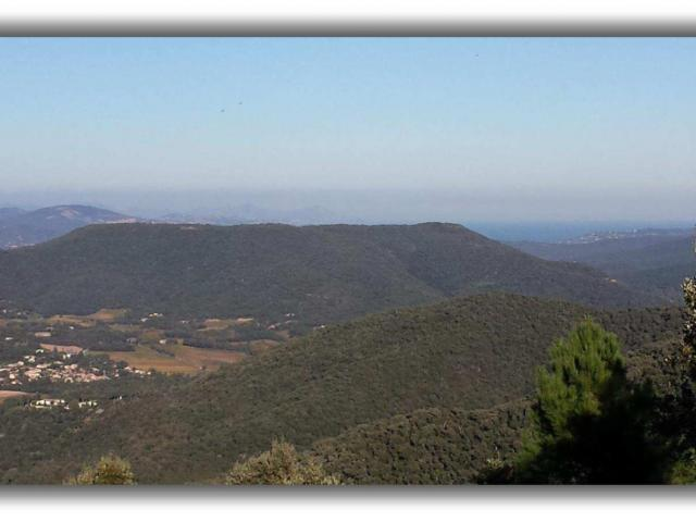 95-Hectares ground near Saint-Tropez (off-market)